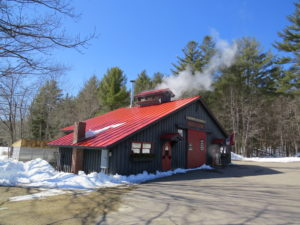 Sugar shack surrounded by snowy yard, with steam from boiling the sap coming out of the chimney