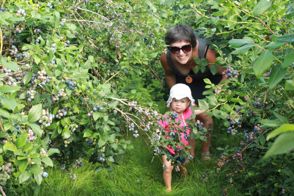 Precious baby girl picking blueberries with her mother