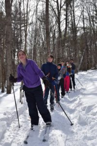 Cross country skiers on a trail in the woods