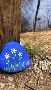 Blue painted rock with flowers seen on the Monadnock Rail Trail