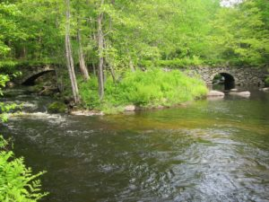 Beard Brook Bridge, Hillsborough - beautiful brook with green trees and foliage and a stone-arch bridge at the rear of the photo