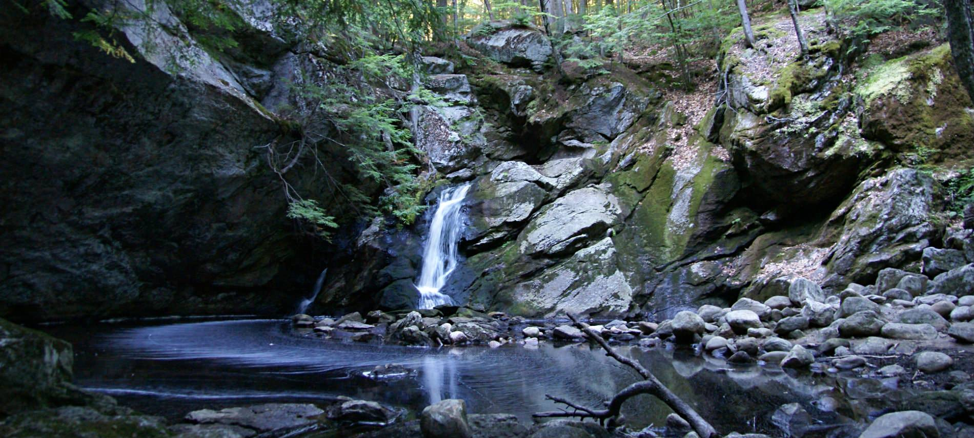 Small waterfall streaming into a pool of water surrounded by rock and greenery