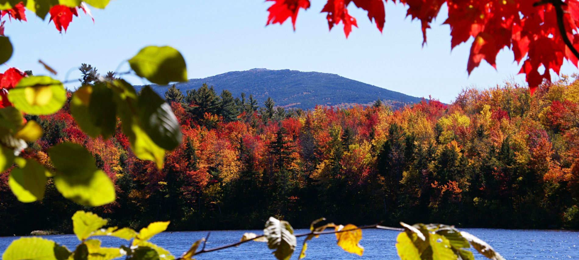 View through colorful fall foliage of Monadnock mountain peak with colorful autumn trees and blue lake in the forefront