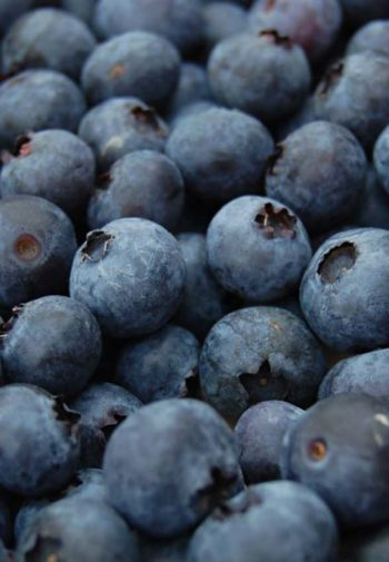 Close-up view of plump blueberries
