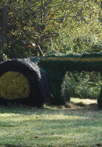 Decorative tractor and table of mums and pumpkins on grass alongside trees