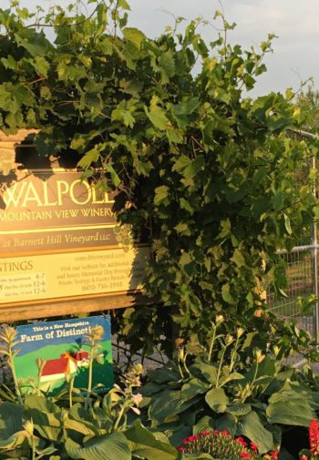Exterior view of Walpole sign surrounded by greenery, red barn in the background