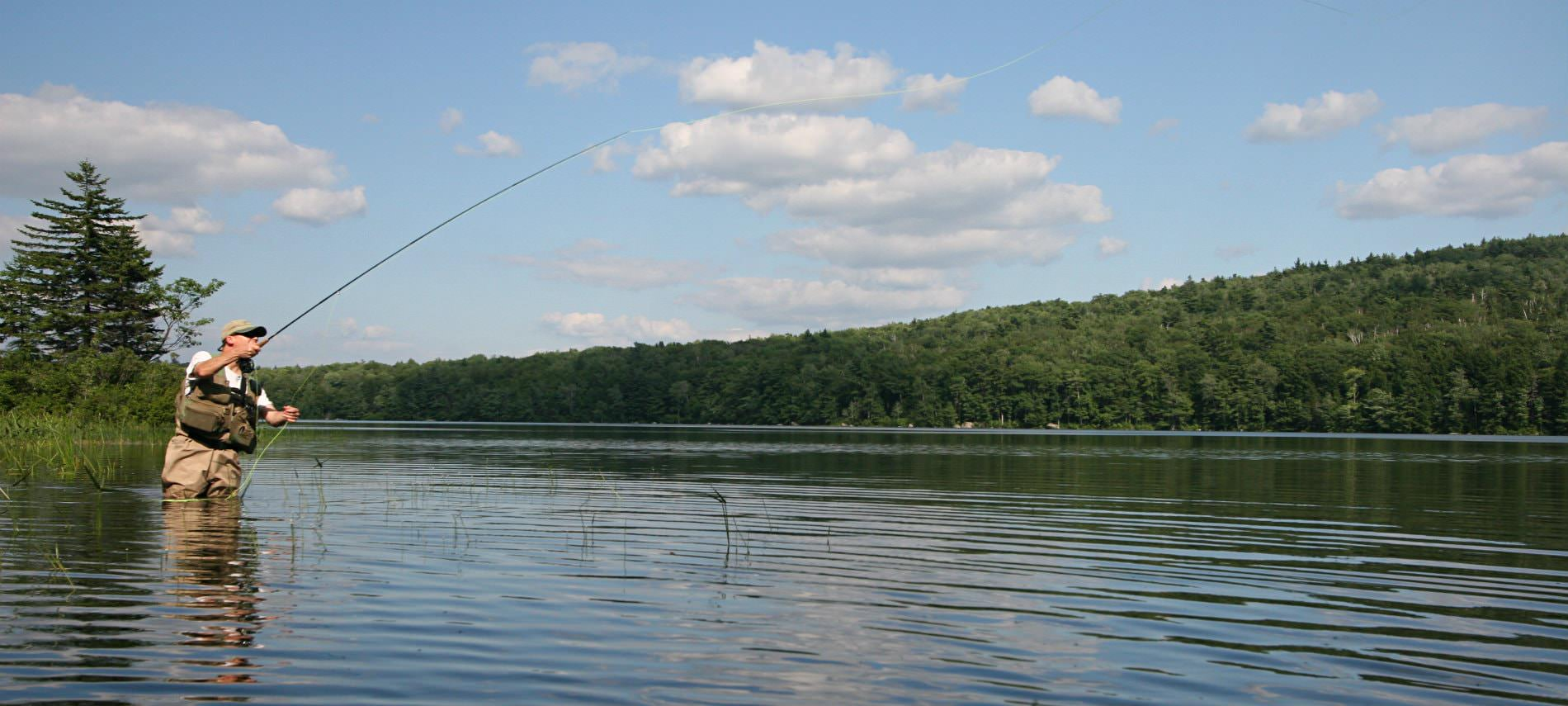 Man wearing waders standing in a  body of water fly fishing surrounded by trees