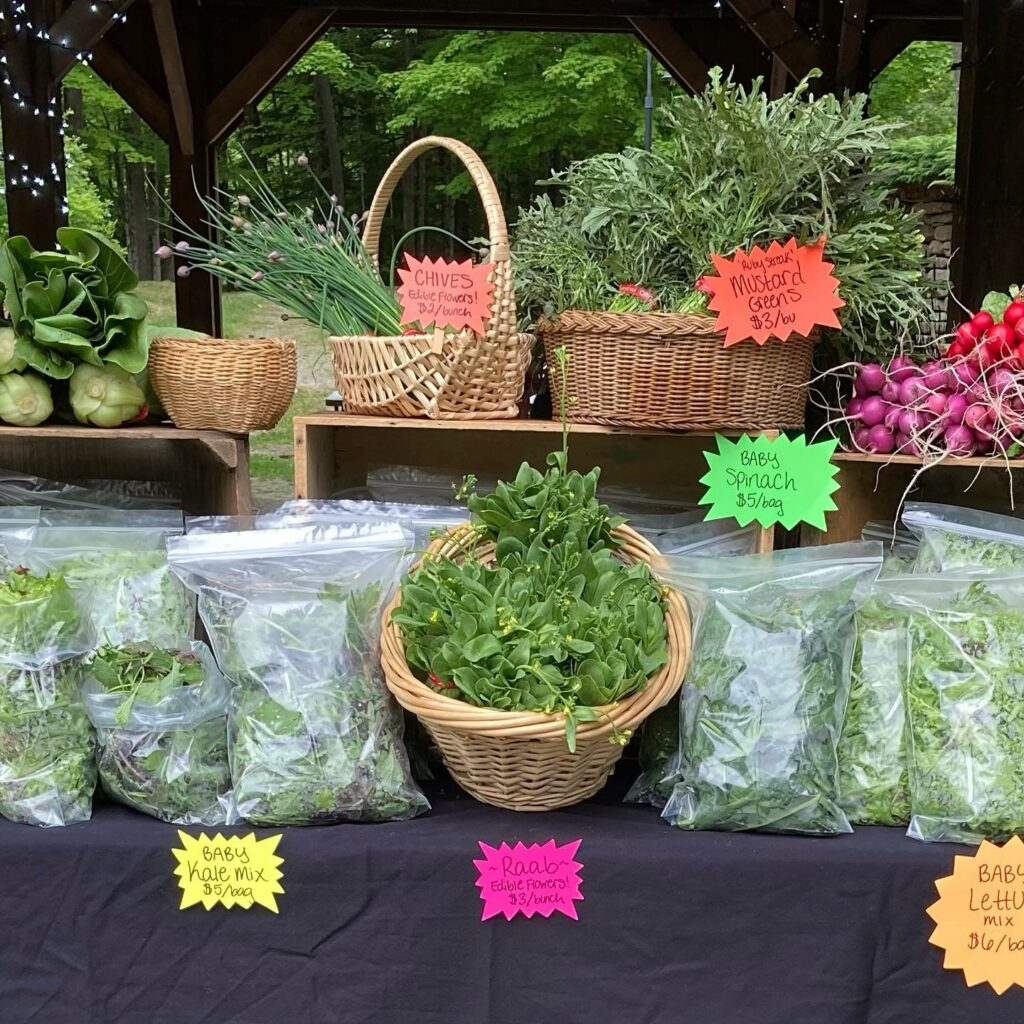 Fresh vegetables and herbs at Stonewall Farm, displayed in baskets and plastic bags